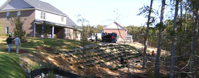 Exceed Landscaping Columbia SC