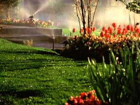 Weathermatic lawn sprinkler photo